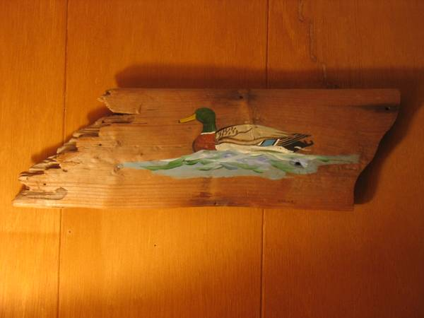 Photo Hand Painted Wood Duck on Rough Cut Driftwood - $15 (Westfield)