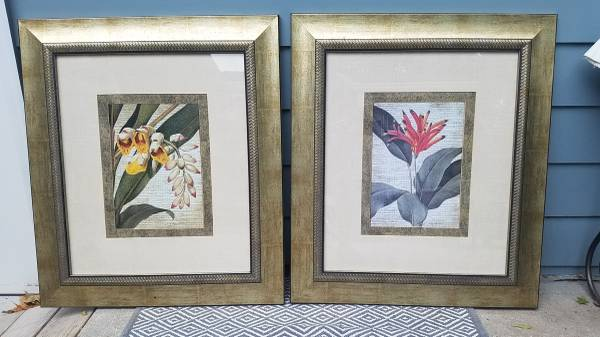 Photo Custom Framed Orchid Pictures by Bassett Accessories - $35 (84th and West Center)