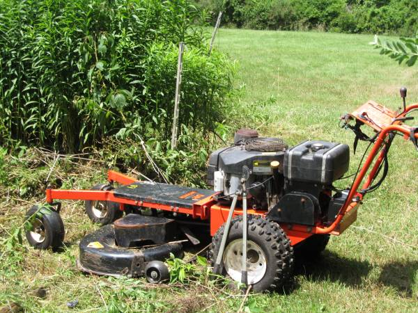 Photo DR MOWER  PUSH BLADE - $1750 (Harpursville)