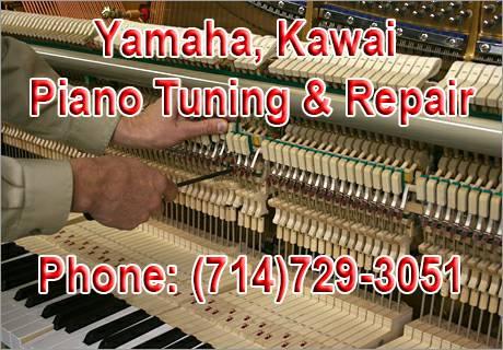 Photo Yamaha,Steinway, Kawai Piano Tuning Specialist. - $100 (Huntington Beach)