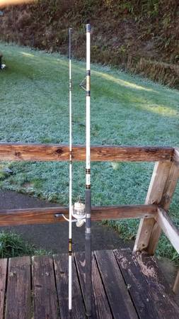 Photo 1039 rod w Quantum Great White 80 - $30 (Coos Bay)