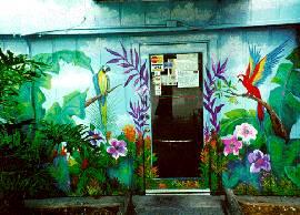 Photo Murals Attract Customers (Orlando-Central Florida)