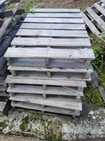 Photo WOOD PALLETS - FREE (Winter Garden)