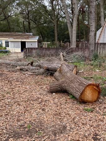 Photo Oak firewood and privacy fence in Pace FL (Pace FL off W Spencer Field Rd)