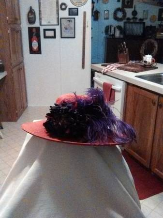 Photo Attention all members of the Red Hat Society hat for sale - $15 (Peoria)