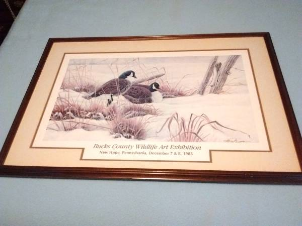 Photo Cherry Wood Framed Duck Poster - Double Matted w Cut Out And non glar - $45 (Havertown, PA)