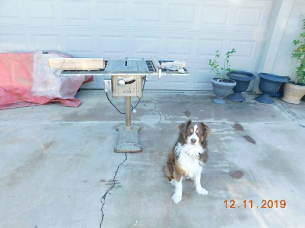 Photo Vintage Craftsman Table saw - $250 (19th Ave and Thunderbird Rd)