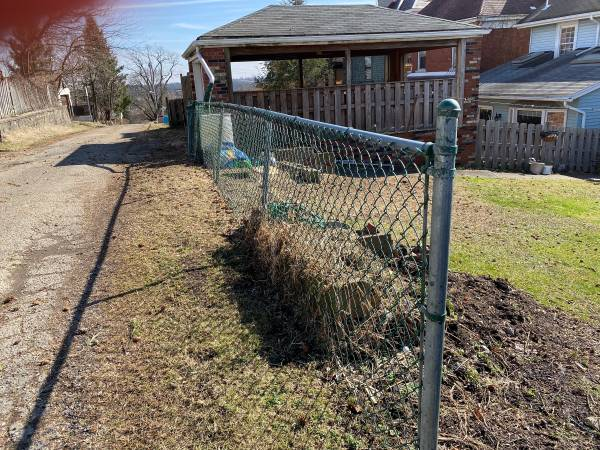 Photo Free fencing - Green Chainlink (Brookline)
