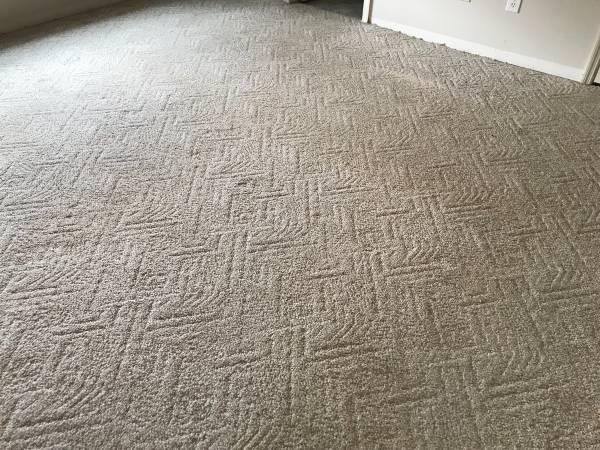 Photo 12 x 15 Carpet (Queensbury)