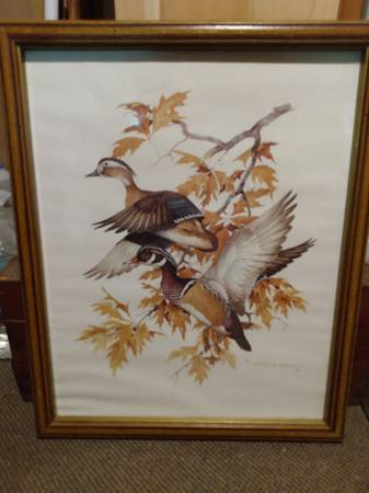 Photo Duck St artist Charles Murphy39s Wood Duck in Flight print - $15 (Central NH)