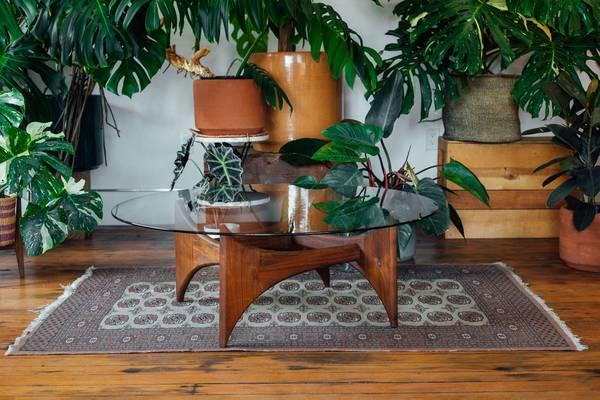Photo Adrian Pearsall Black Walnut  Glass Circular Coffee Table - $1195 (535 SE Morrison St)