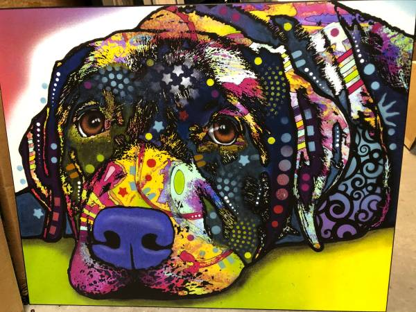 Photo Animal (Dog and Cat) Prints Mounted on Wood - $95 (Tigard)
