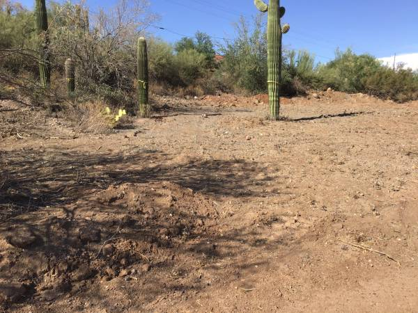 Photo Lot for sale manufactured homes or site built (Black canyon city)