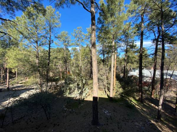 Photo Pine Trees and Close to Downtown Room for Rent (Prescott)
