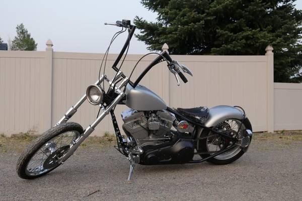 Photo 2004 Demons Custom Harley Davidson Motor Cycle - $6,500 (Montrose)