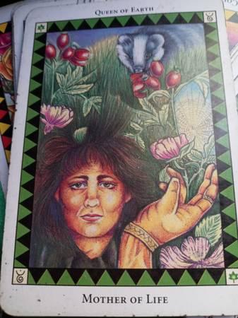Photo fortune teller cards - $175 (Pueblo)