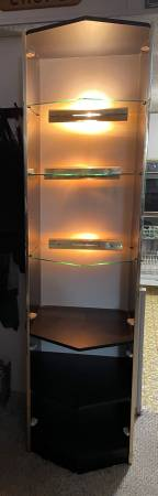 Photo Display case with lighted glass shelves - $50 (Albion)