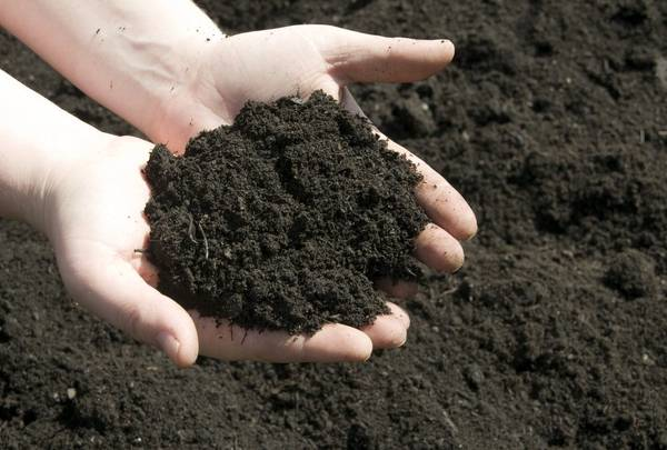 Photo Top soil  Black dirt - $50 (Milan)