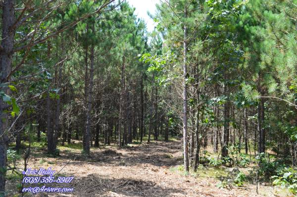Photo Adams County Wooded Property Minutes To The Lakes (Rome)