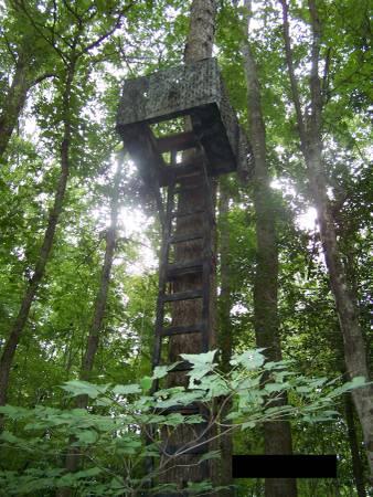 Photo 14 Lock-on Tree Stand - $50 (Selma)