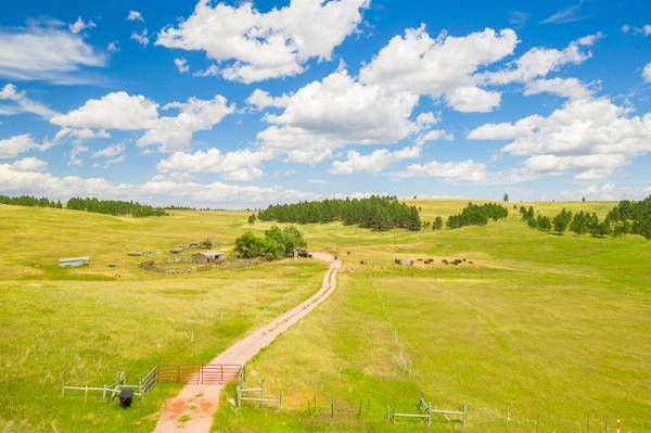 Photo This livestock ranch is an absolute dream where buffalo  YOU can roam (26690 Hwy 89, Custer)