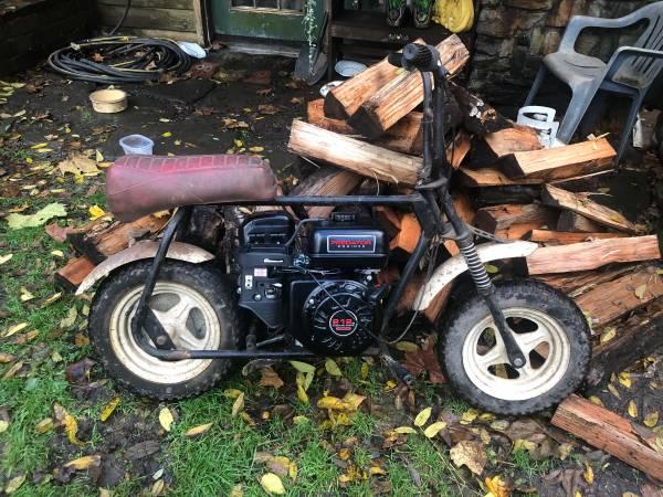 Photo 1979 Mini bike for sale - $300 (Robesonia)