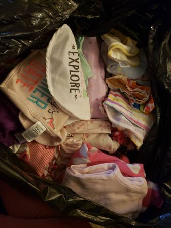 Photo Free Bag of Baby Girl Clothes Newborn through 2 years (Reading)