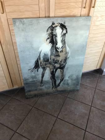 Photo 39X30 UNIQUE HORSE ART - $50 (RENO)
