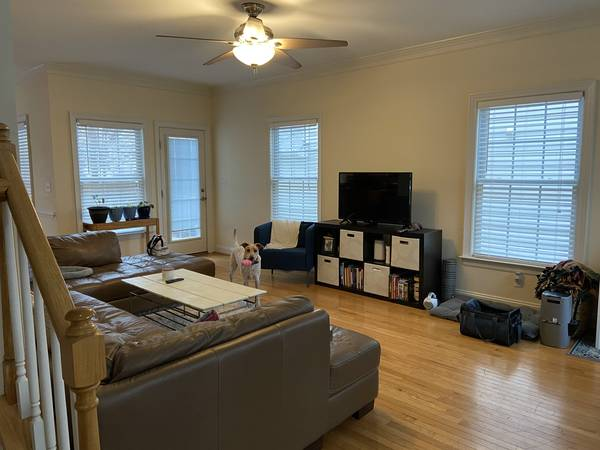Photo VCU Student looking for 3 female roommates for lovely Apt in Randolph (Randolph section)