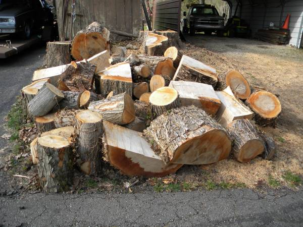 Photo Free Firewood Must Take All (Switzerland Co. SE In.)