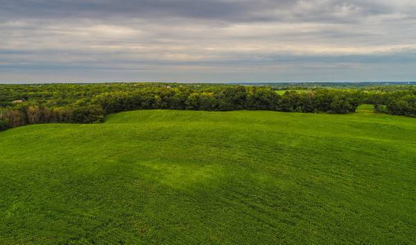 Photo 150- Acres Olmsted County, MN (Rochester)