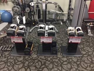 Photo PowerBlock Adjustable Dumbbells (Johnson Fitness and Wellness Rochester)