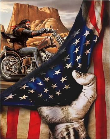 Photo Custom American Flag Art - $1,234 (Rockford)