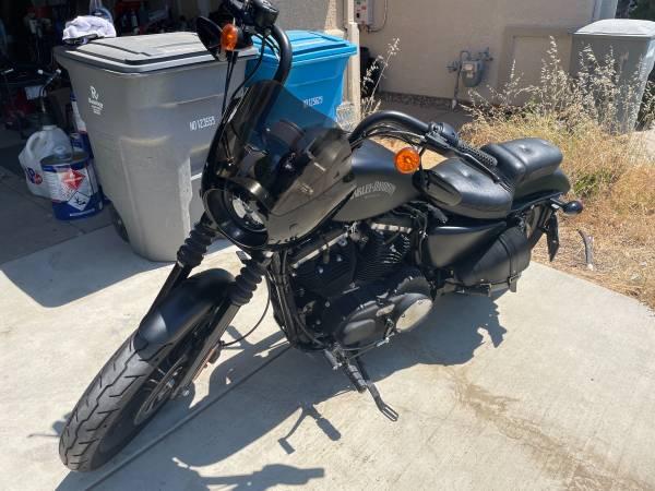 Photo 2014 Harley-Davidson Iron 883 - $7,000 (Arbuckle)