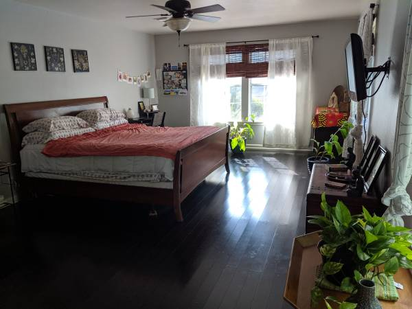 Photo Beautiful, classy, and homey room for rent- Dec 1 (east travis heights)