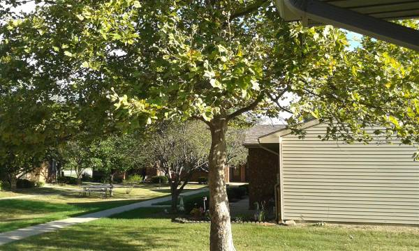 Photo Apartments for rent (524 N Benton St, Oak Harbor, OH)