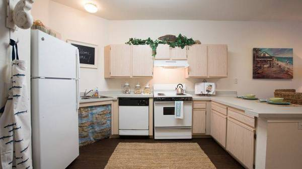 Photo Active Senior 55 1 Bed -1 Bath apartments with huge walk in closets (San Marcos)