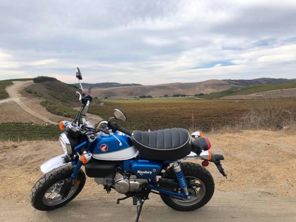 Photo 2021 Honda Monkey - $5,100 (Santa Maria)