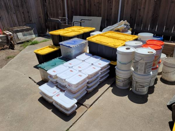 Photo Huge Seashell collection - Business Opportunity - $3,000 (San Diego)