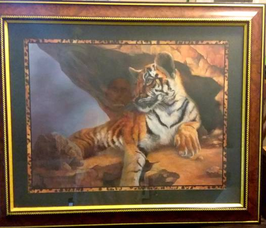 Photo BENGAL TIGER PICTURE - $50 (Sarasota)
