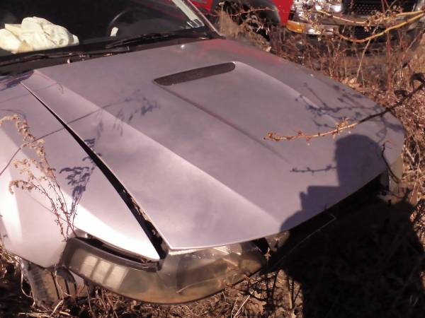 Photo 2000 FORD MUSTANG HOOD USED SILVER - $40 (Bloomsburg)