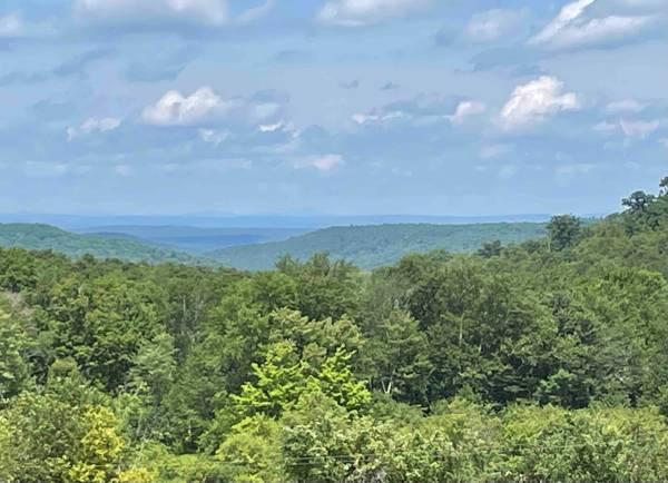 Photo Million Dollar Views - 1.4 Acres (Beach Lake)