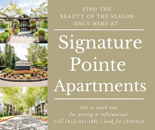 Photo FIND THE BEAUTY OF THE SEASON ONLY AT SIGNATURE POINTE APARTMENTS