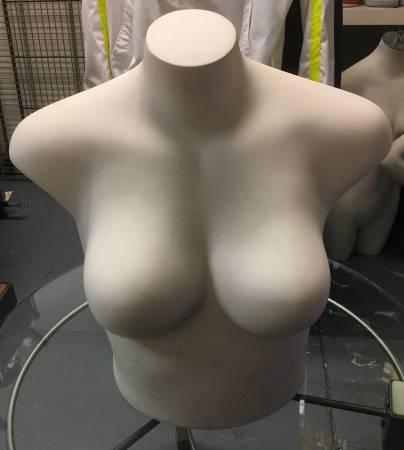 Photo Quality Mannequins Female Bust Torso Leg - $50 (Snohomish)