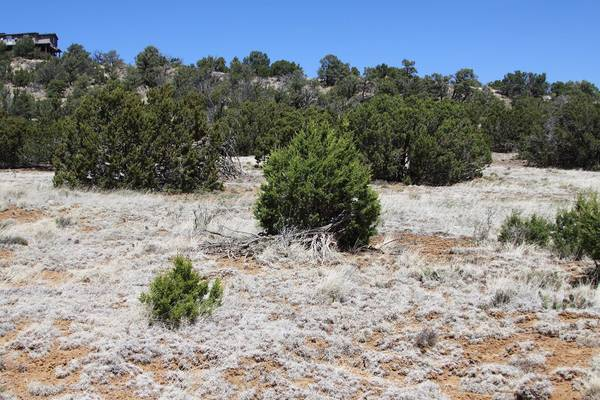 Photo For Sale in White Mountain Paradise 107-29-213 (Concho)