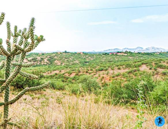 Photo INVEST IN LAND OWNER FINANCING AVAILABLE 1.85 ACRES IN RIO RICO, AZ (Rio Rico)