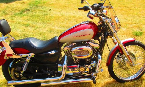 Photo 2004 Harley XL 1200 CUSTOM - $6,500 (PIEDMONT)