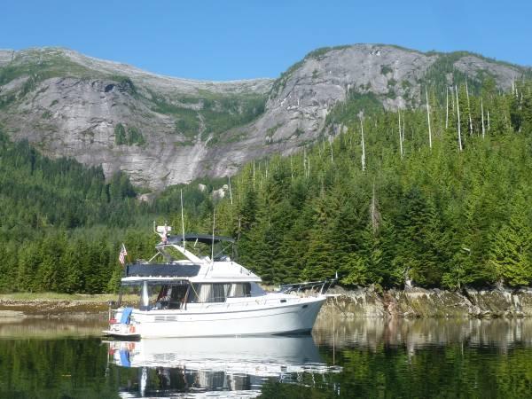 Photo 1990 3288 Bayliner Motor Yacht - $39,900 (Shelter Bay La Conner, WA)