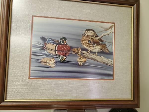 Photo Wood duck print - $105 (Clinton)