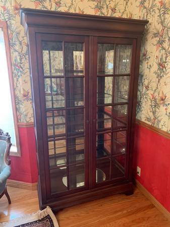 Photo Cabinet, glass shelves, lighted - $400 (Plymouth)